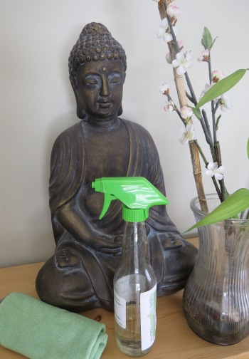 Spring Cleaning Buddha Dusting